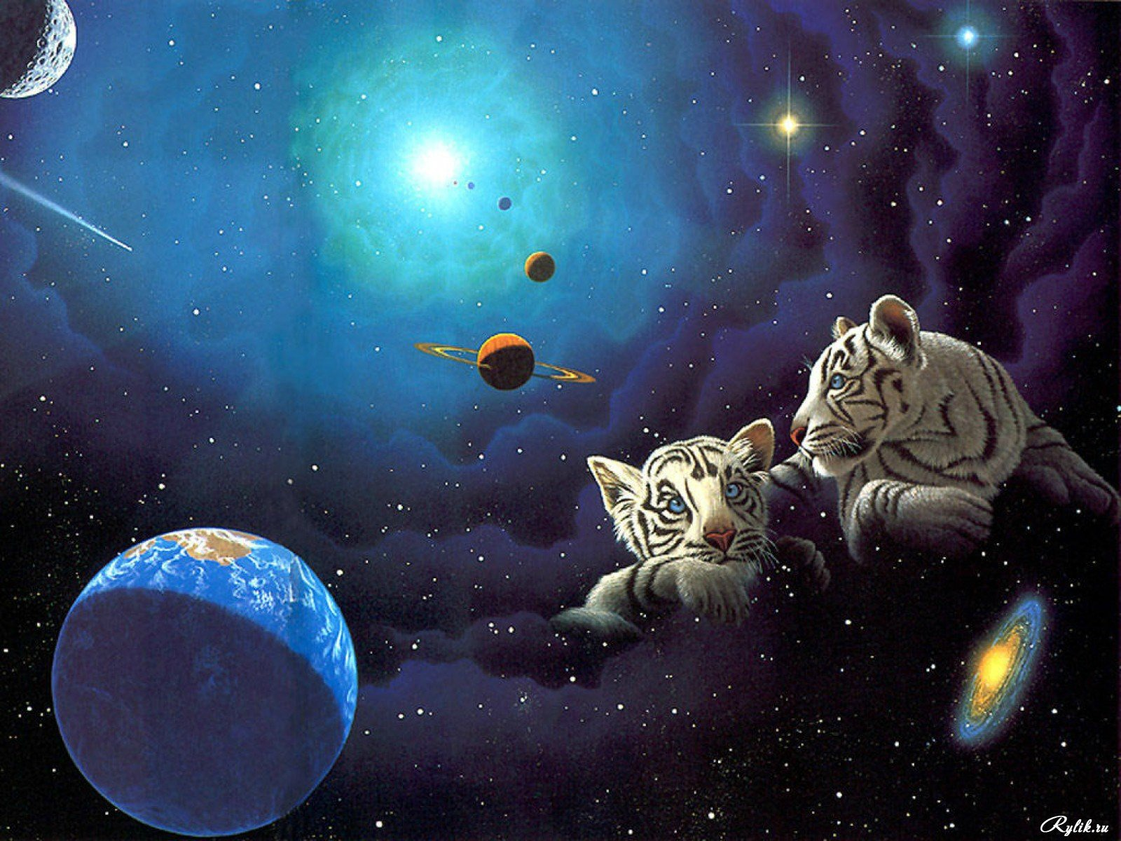 Galaxy tiger background