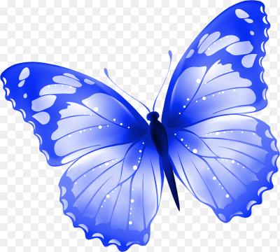 Бабочки в интерьере оригинальные композиции из бабочек