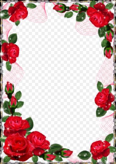 Показать фото цветов роз