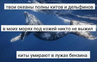 Дар, картинки с надписью киты умирают в лужах бензина