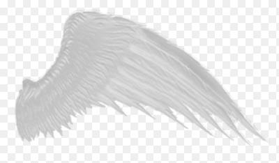 Картинки ангельские крылья