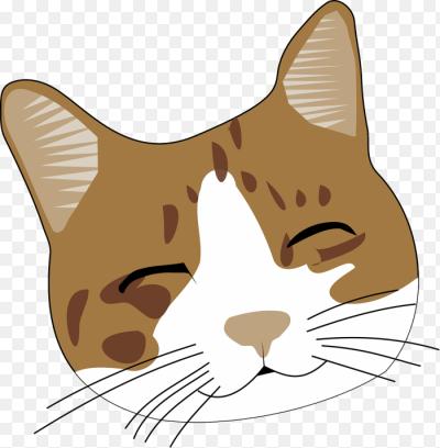 Морды кота пнг