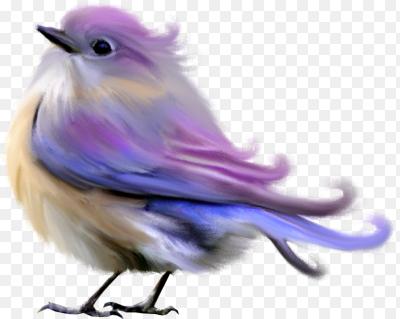 Пнг стая птиц