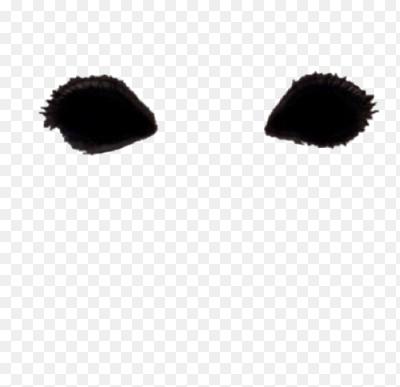фото разновидность пиксельные ушки усики на фото остистое распространенное комнатное