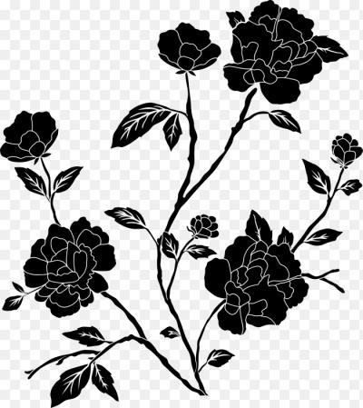Цветок черный пнг