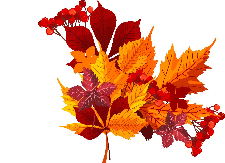 Букет осенние листья картинки для
