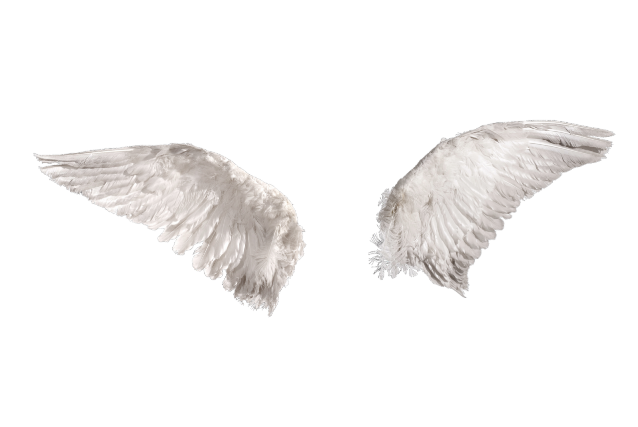 Картинки крылья ангела анимация