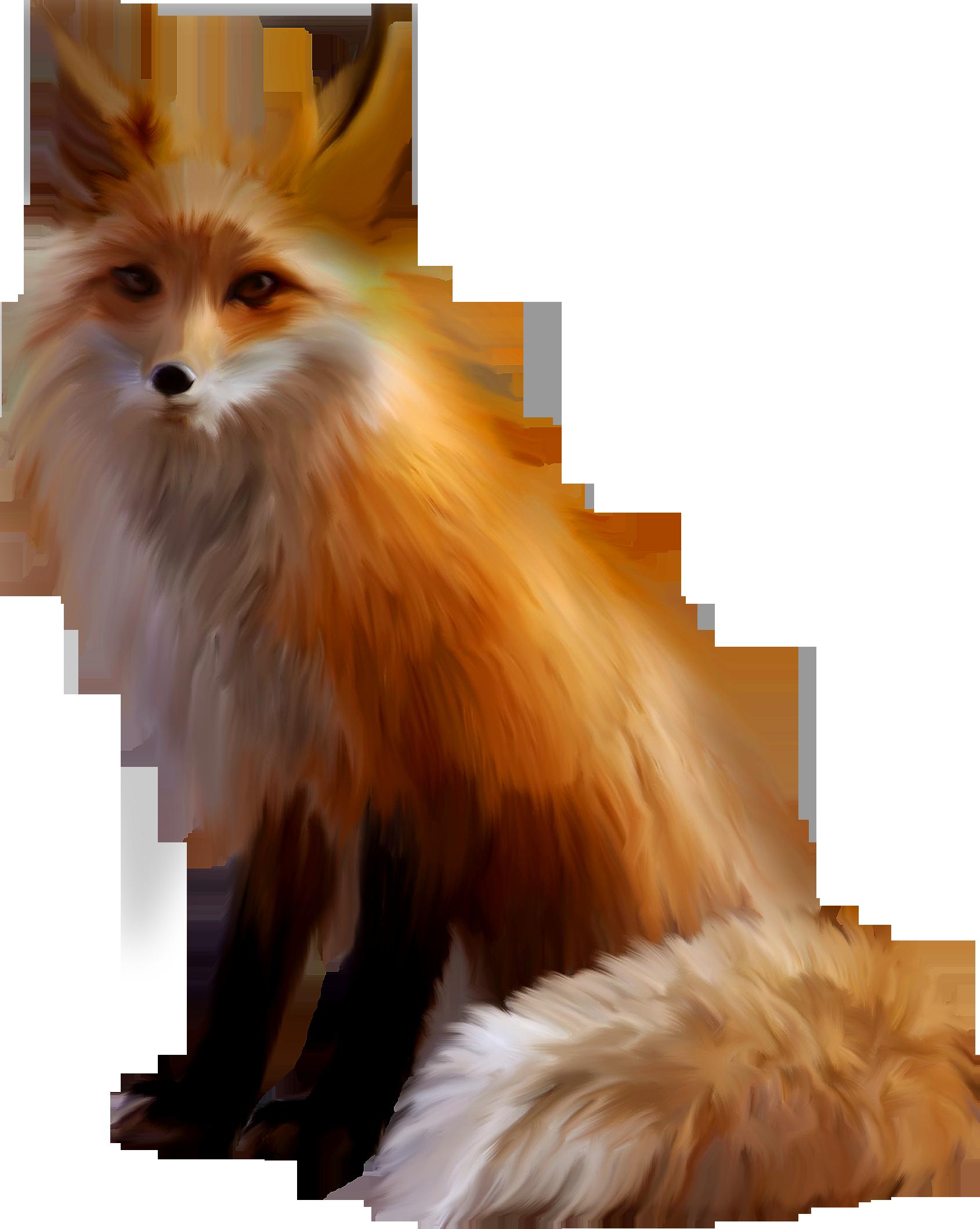 выяснилось, картинка лисицы на белом фоне прыщей при