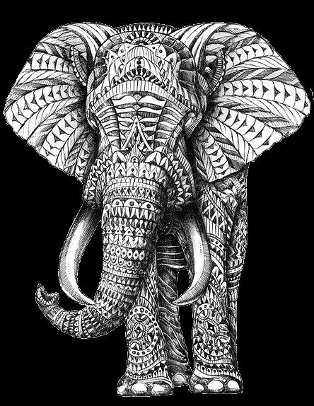 Рисунки слонов в графике