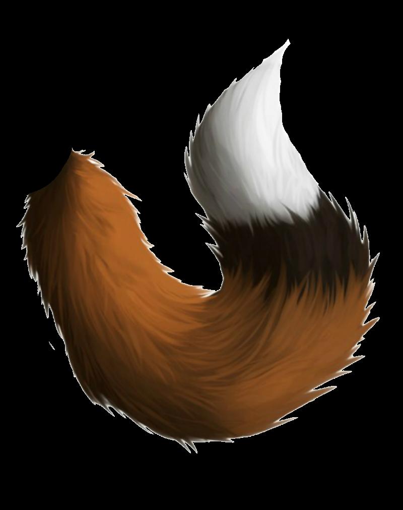 Фото белый лис