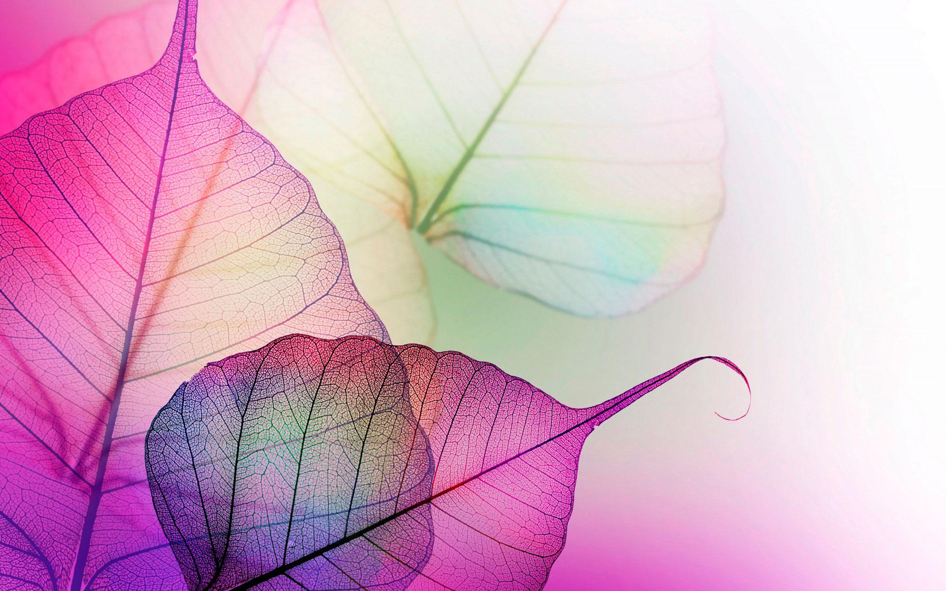 Яркие светлые картинки