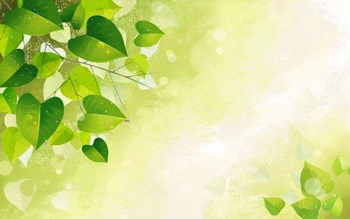 Зеленый фон для поздравления 26