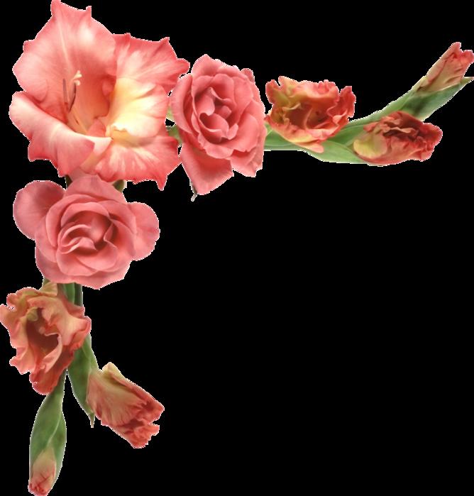Открытки панорамные, картинки цветы в углу