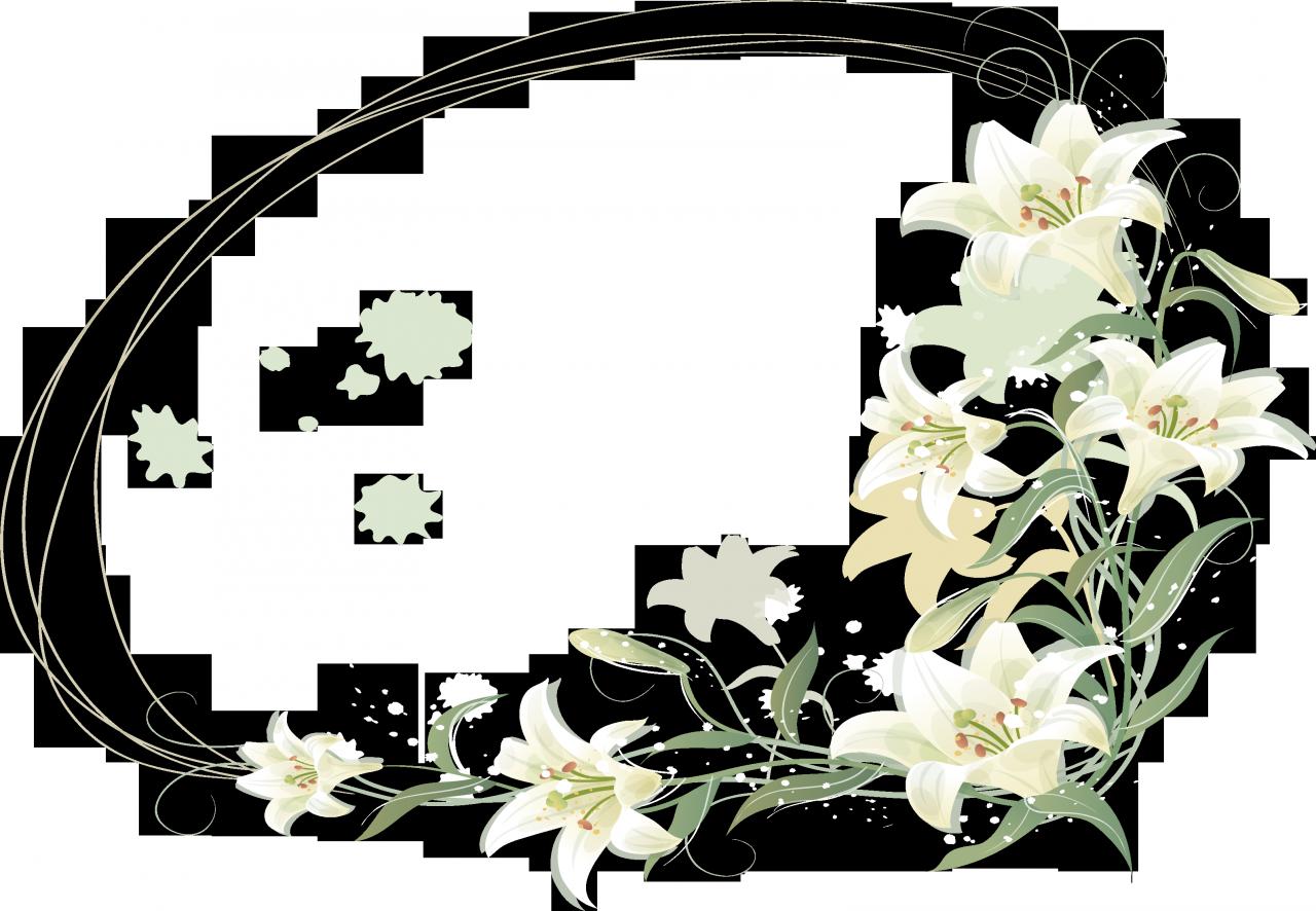 Рамки и картинки лилия