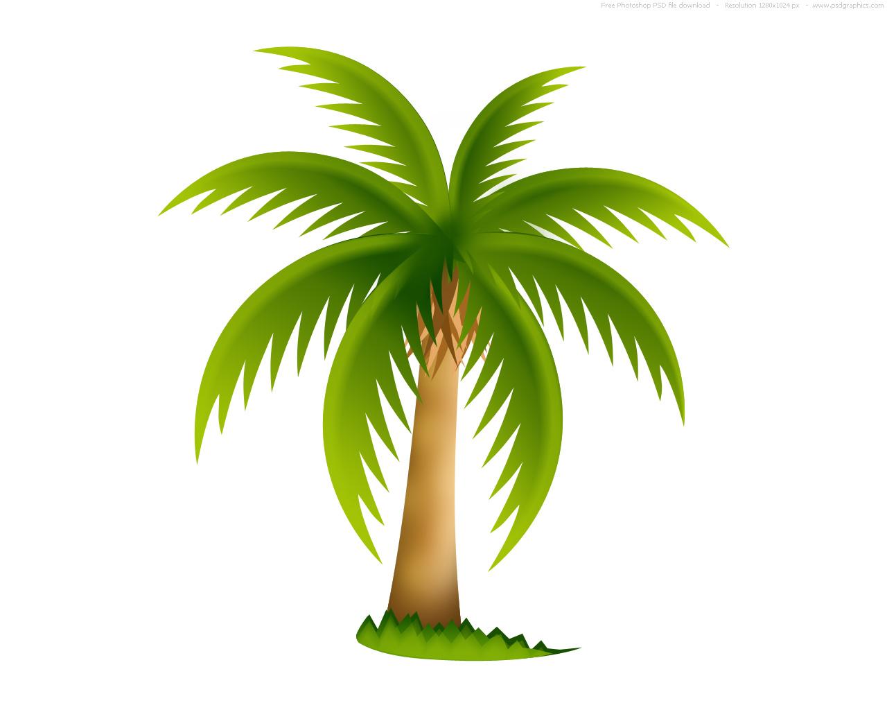 Пальма (город) — Википедия