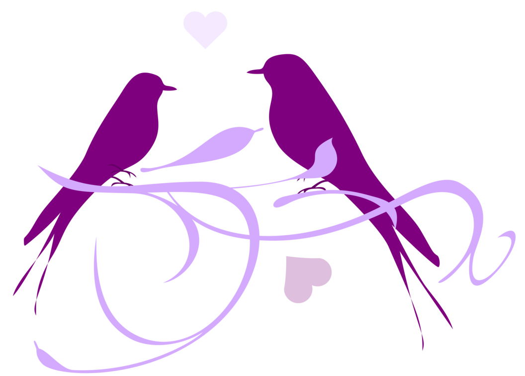 капусты, весенние птицы картинки в векторе вытянутых рисунок такой