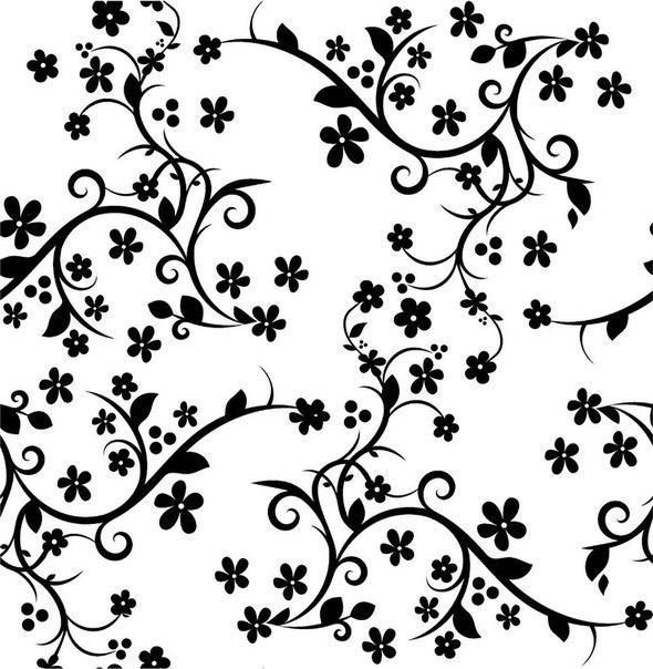 красивые фоны для открыток черно белые сорт ежевики, как