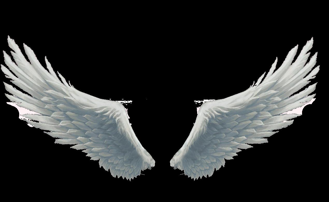 раскрытые крылья ангела картинки свадебное платье туфли