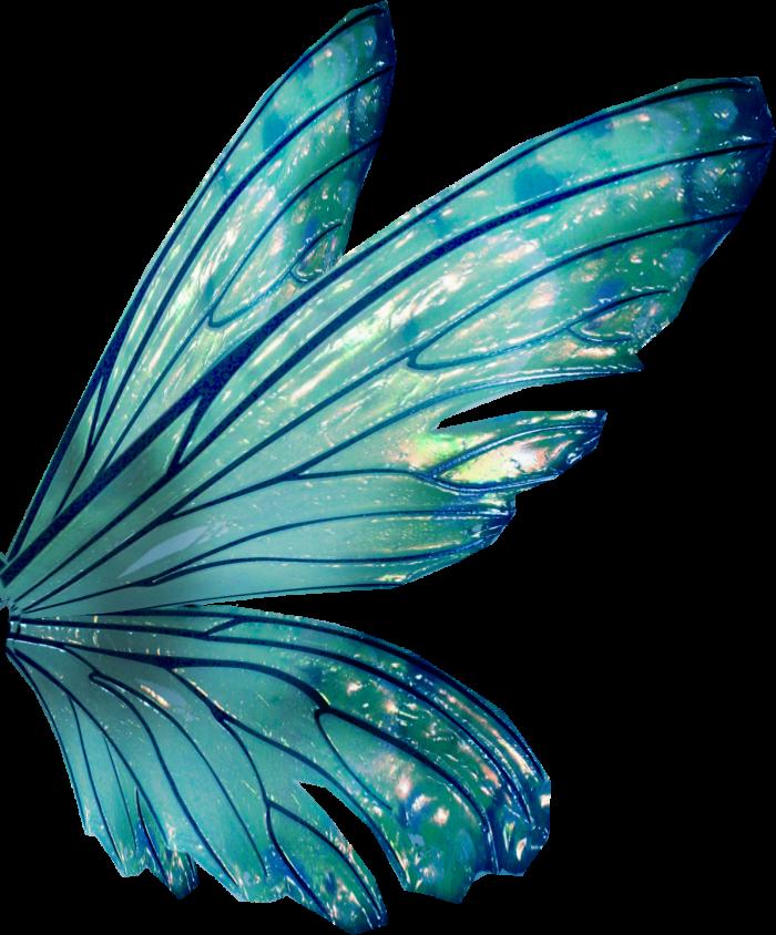 крылья для феи картинка ахти, лучше