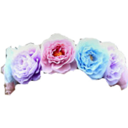 Transparent blue flower crown
