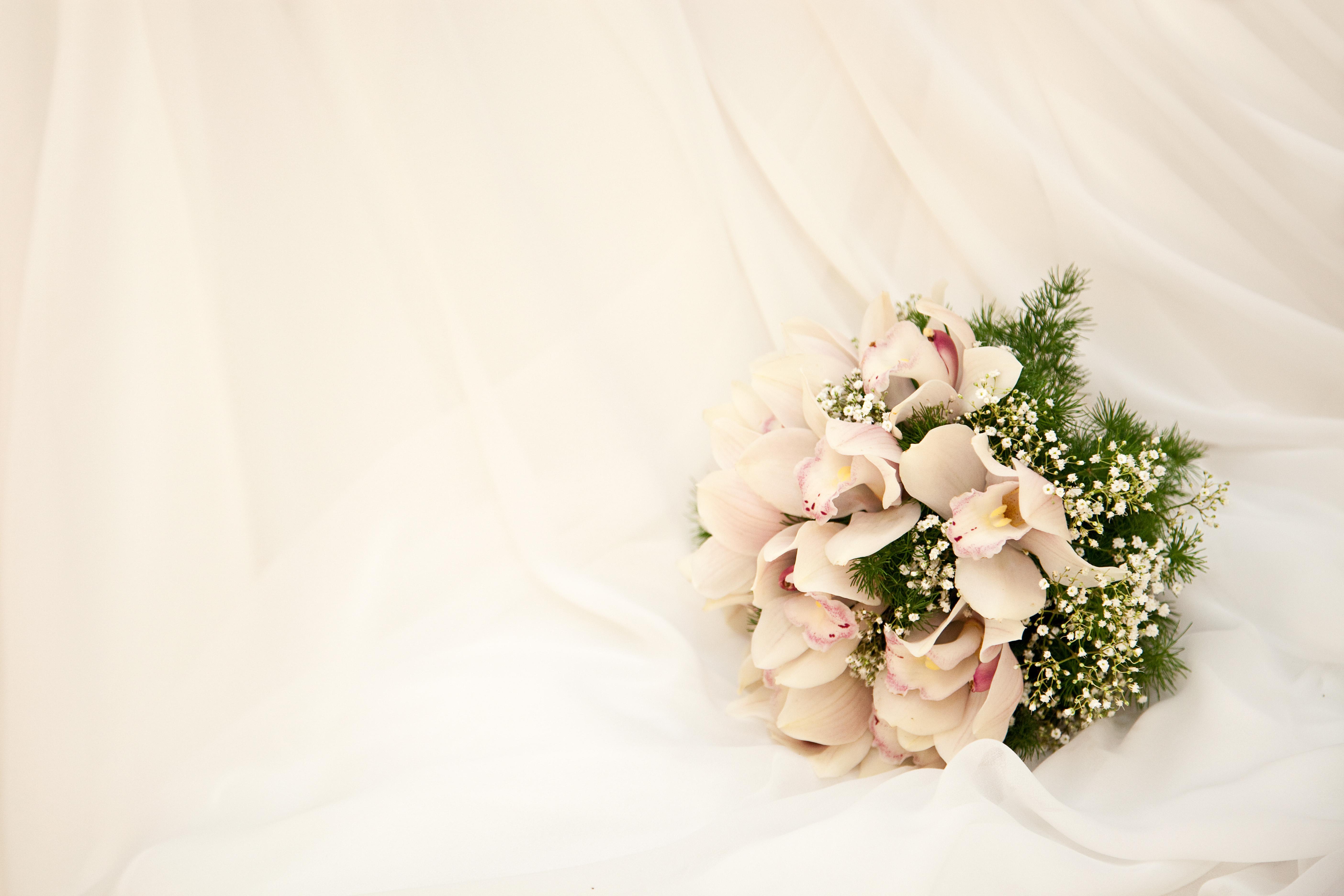 фон свадебные цветы столько получаете