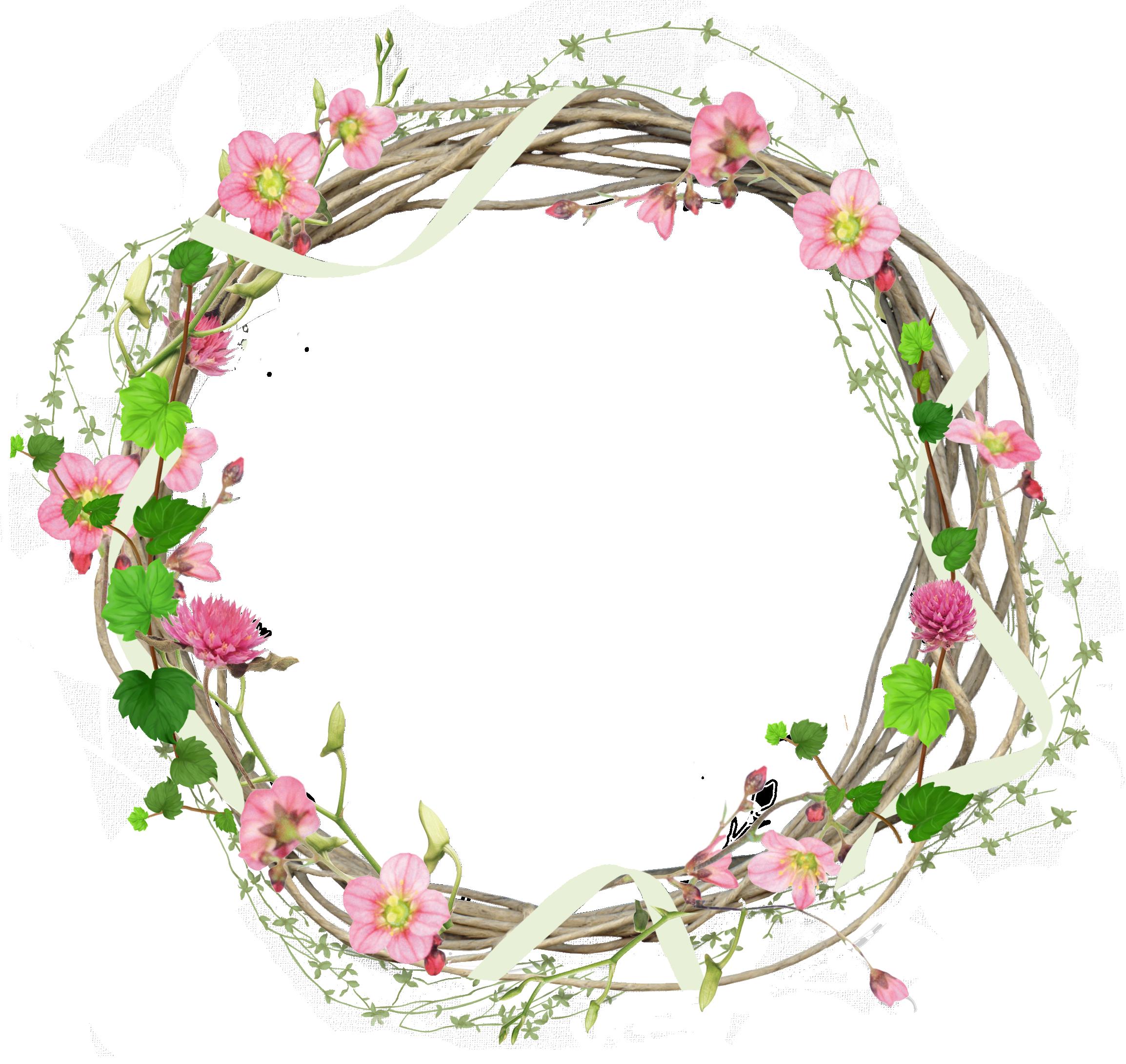 Цветы пионы пнг 8