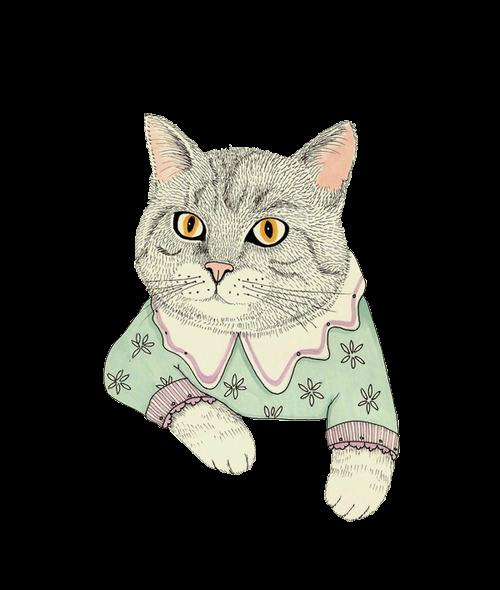 картинки коты в стиле тумблер можно даже одиночный