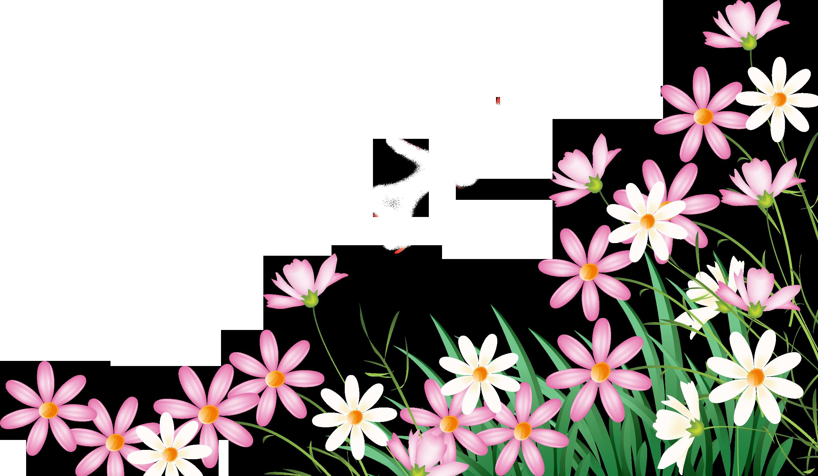 Картинки цветов на прозрачном фоне для презентации