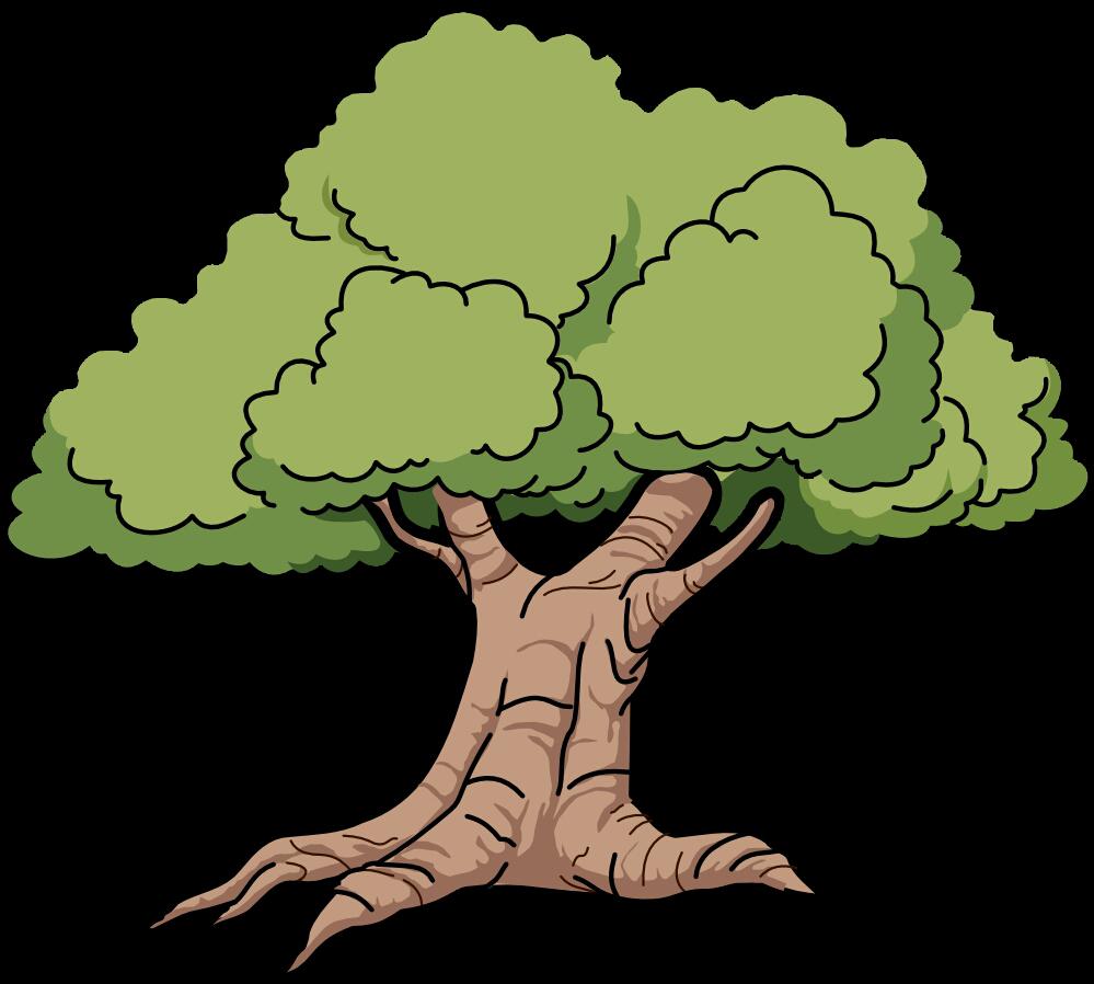Цветные картинки дерева дуба