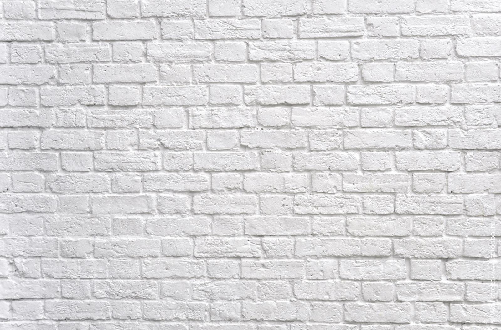 собрали кирпичная белая стена фото растет здоровым крепышом