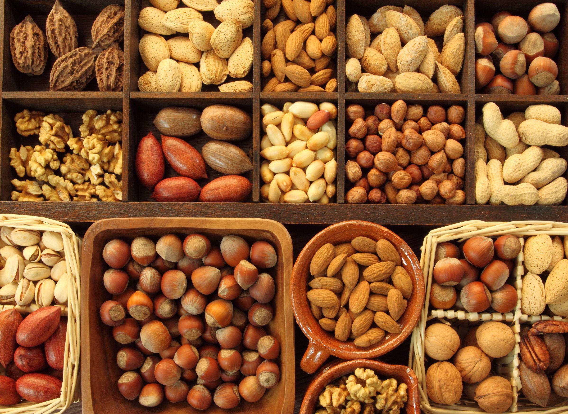 Картинки всех видов орехов