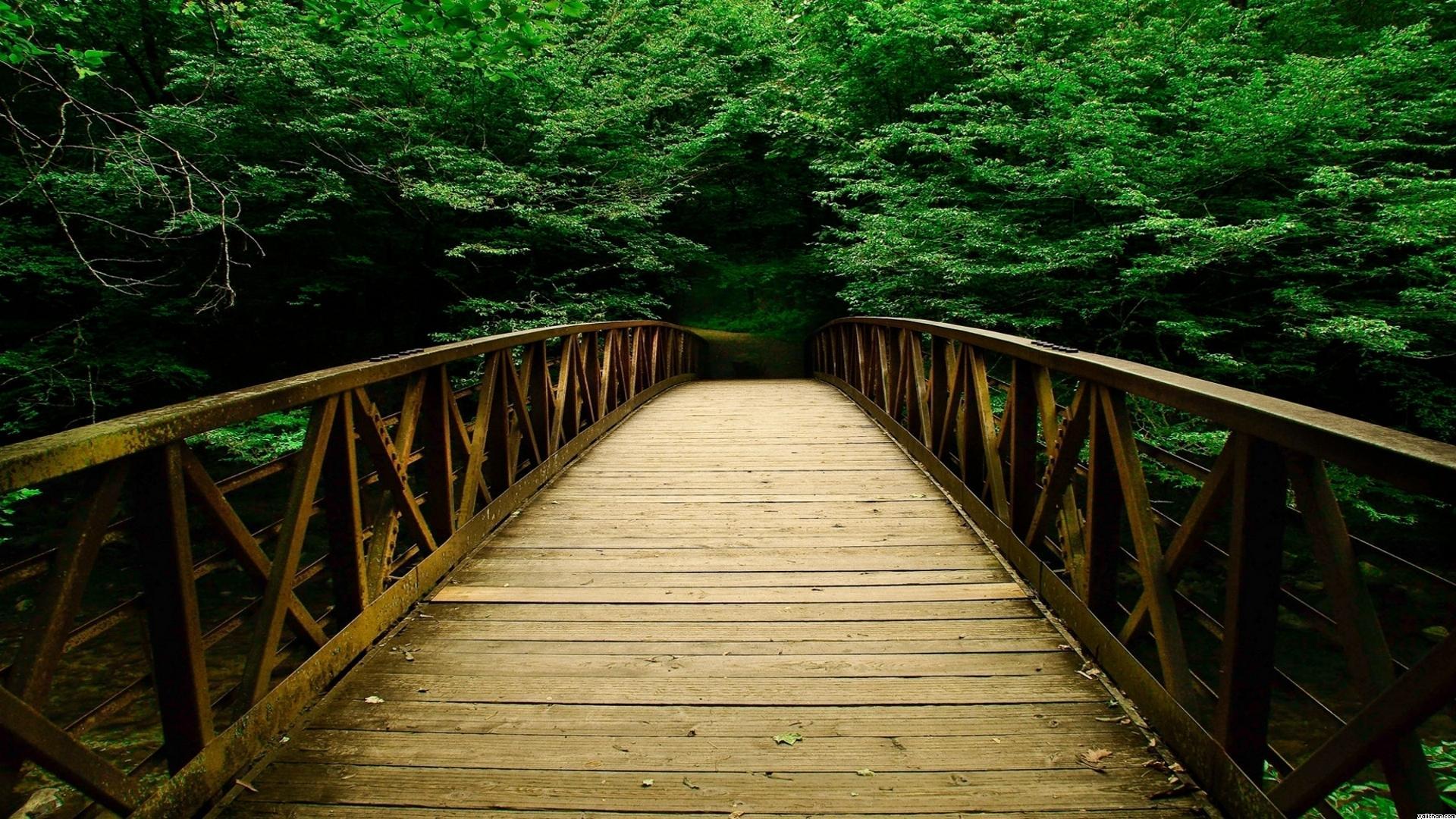 мост к обрыву подборки