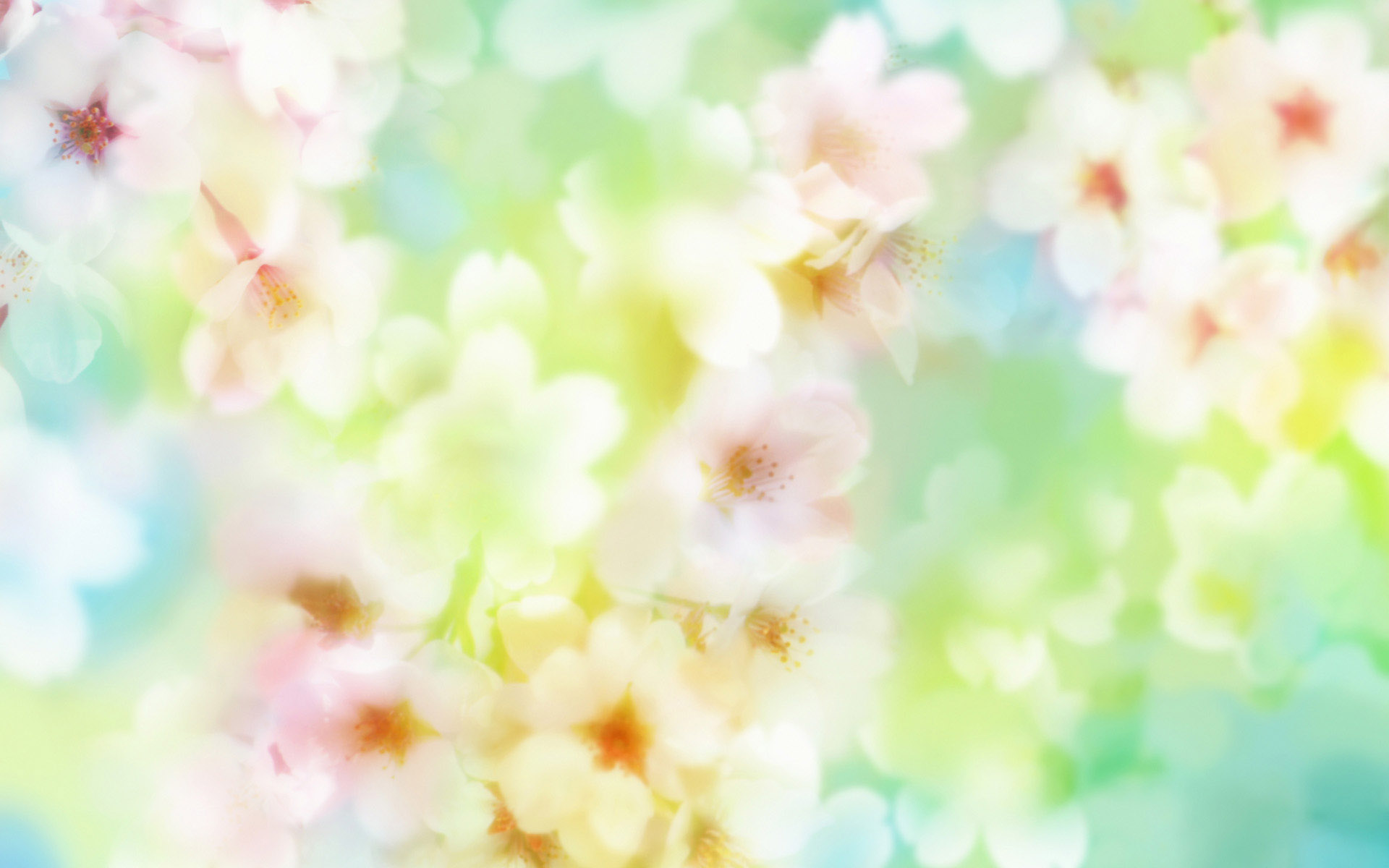 Картинки фон цветы весна