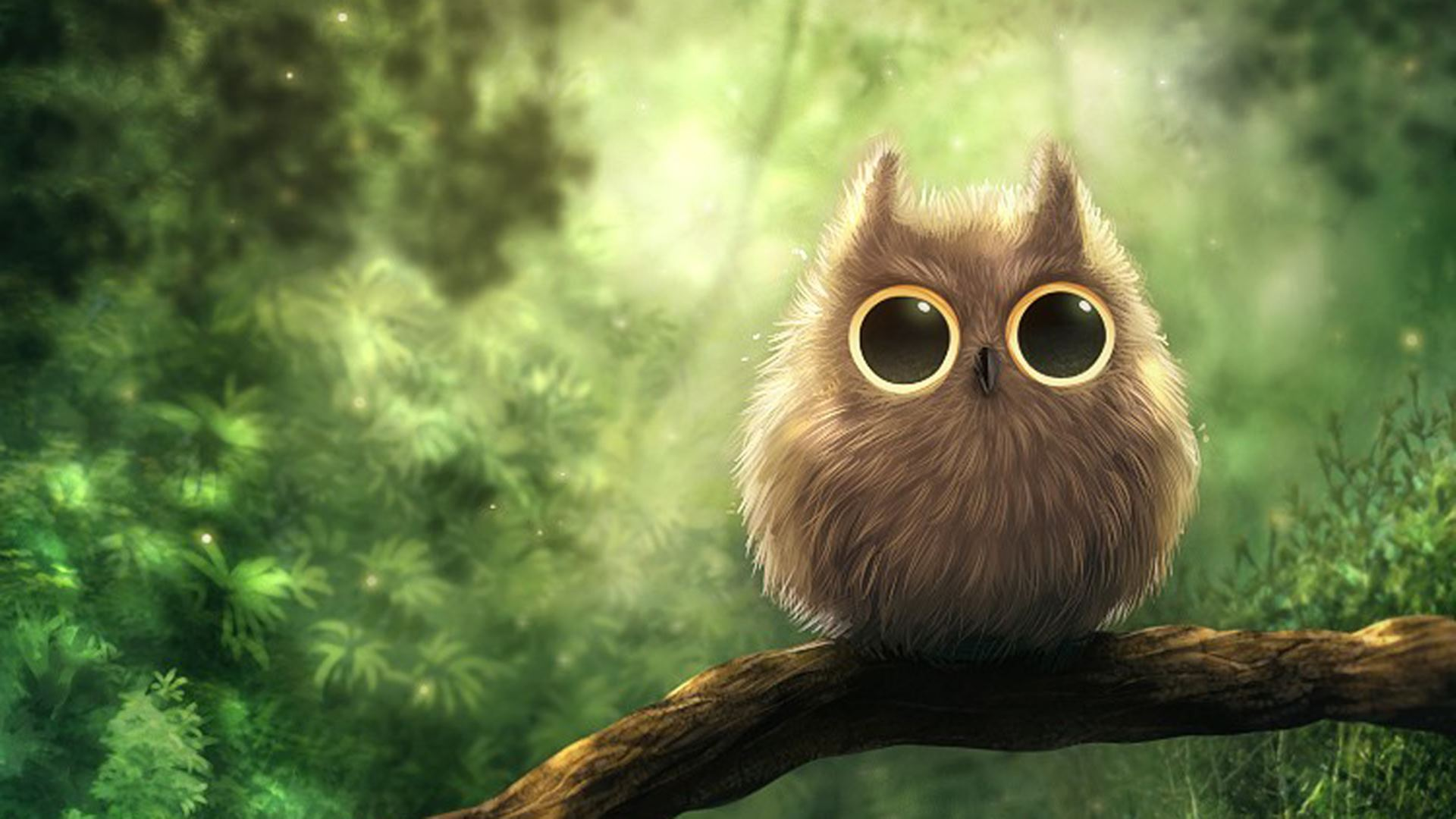 cute owl images - 1280×720