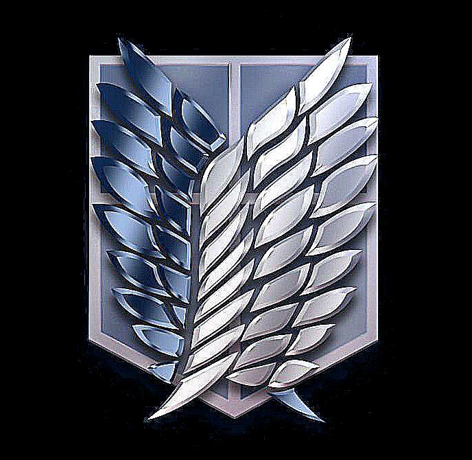Набор в клан Wings of Freedom 595254f52dbc115ce99bddc3