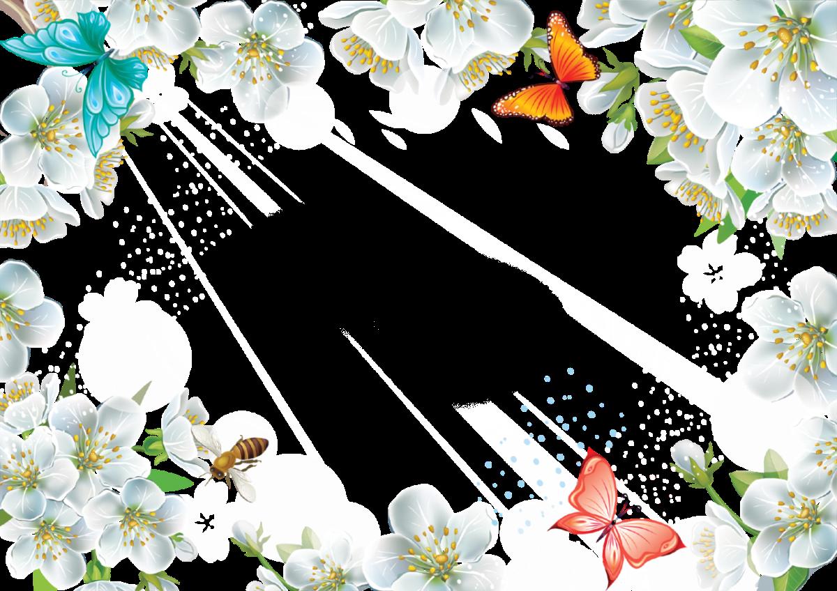 Рамка для с цветами и бабочками