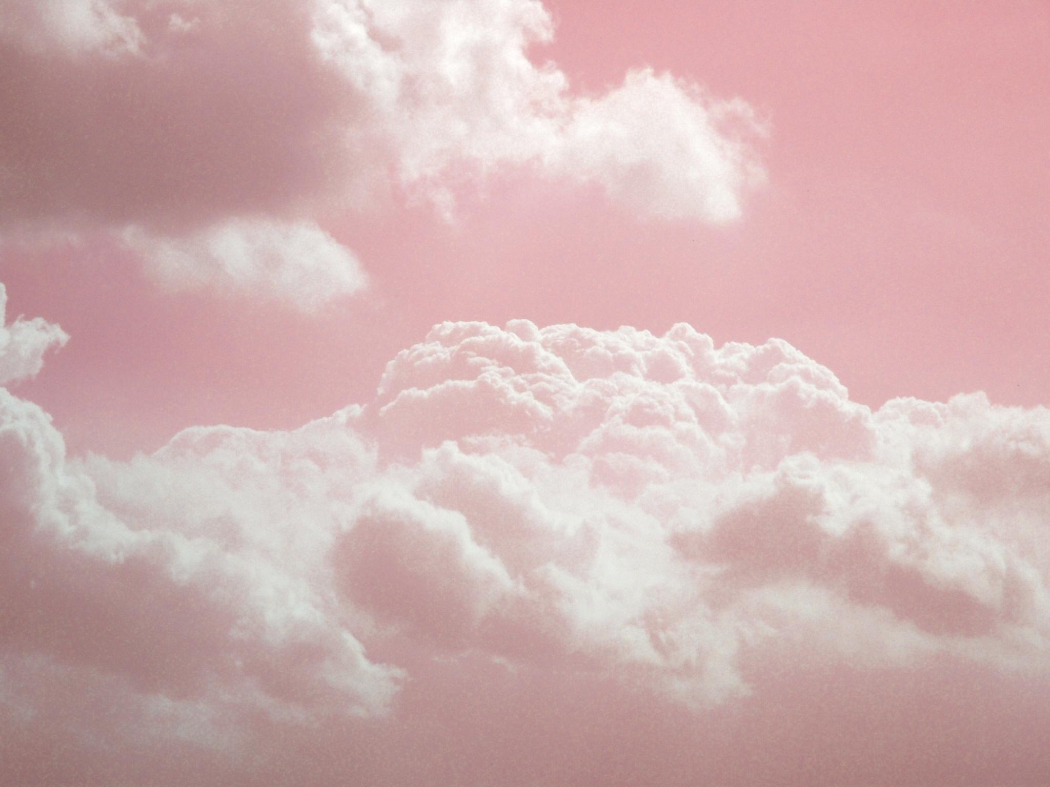 место нежное облако цветов фото любом