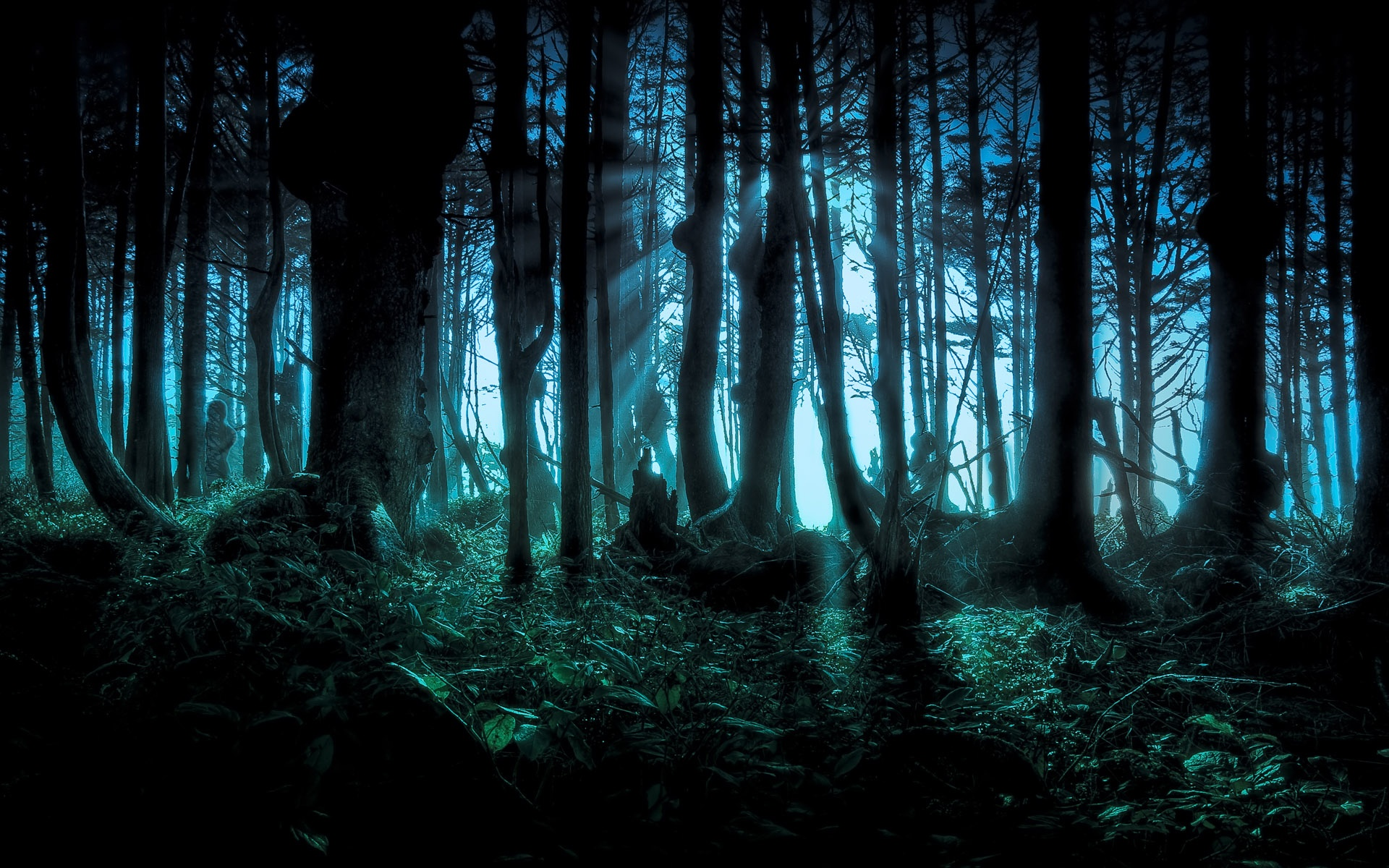 meet ghost the powerful alternative to tumblr - HD1920×1200
