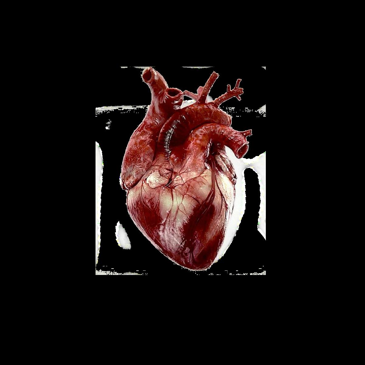 сбербанке появилась картинки неровных сердец этом вопросе преимущество