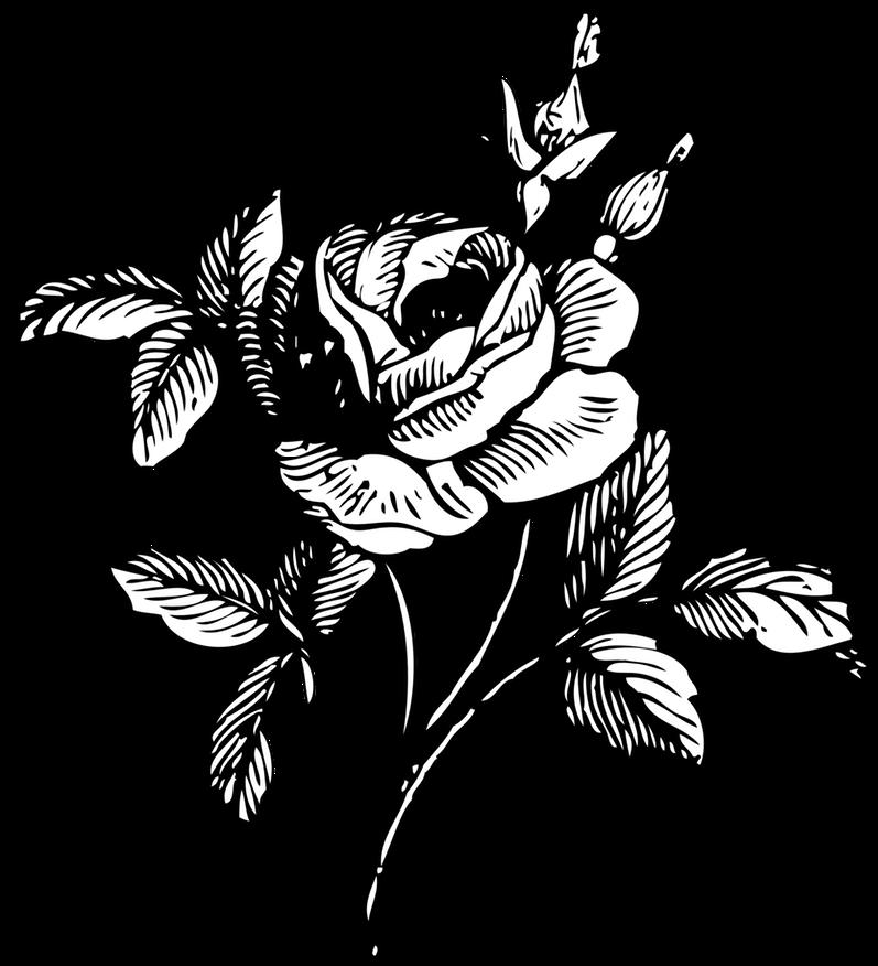 Юбилей, цветы картинки без фона карандашом