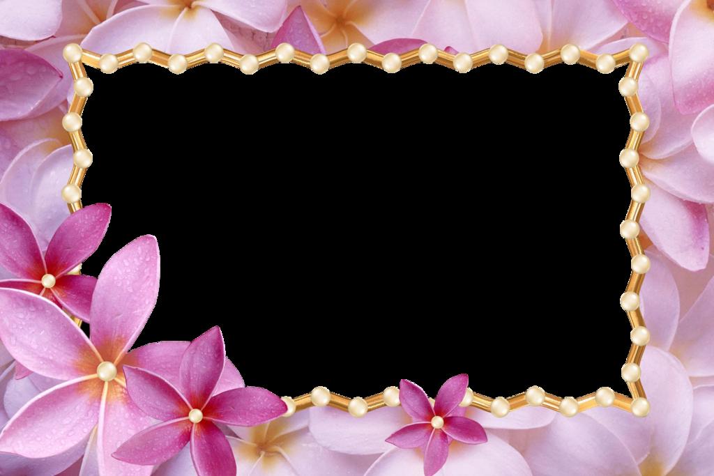 Женщине, красивые рамки для открыток горизонтальные