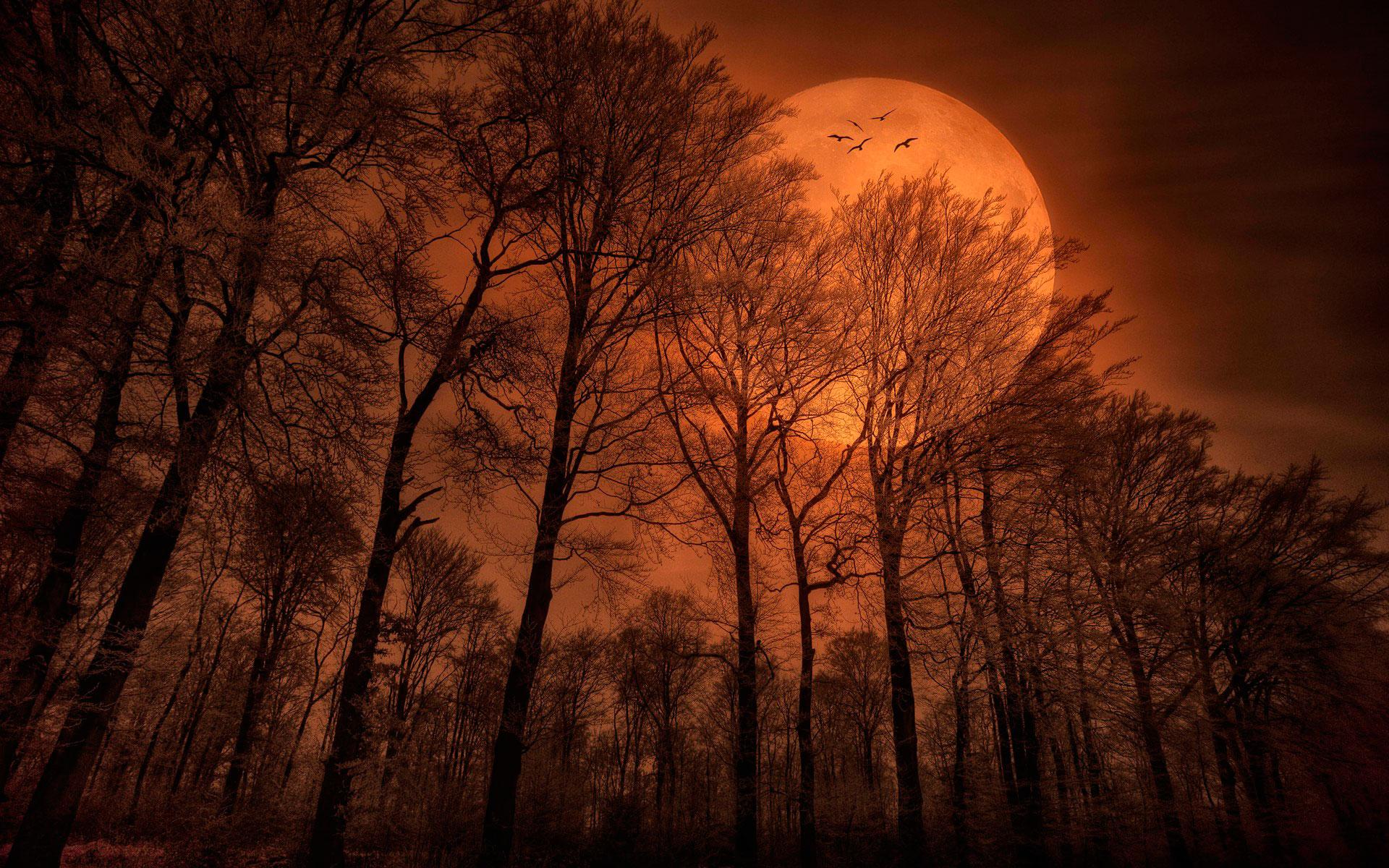 этой как фотографировать пейзаж с луной игры вызвали большой