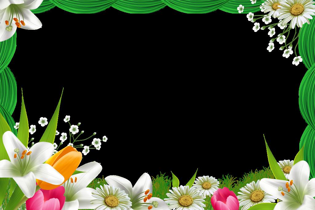 Картинка с рамкой для текста цветы, пятница юмором