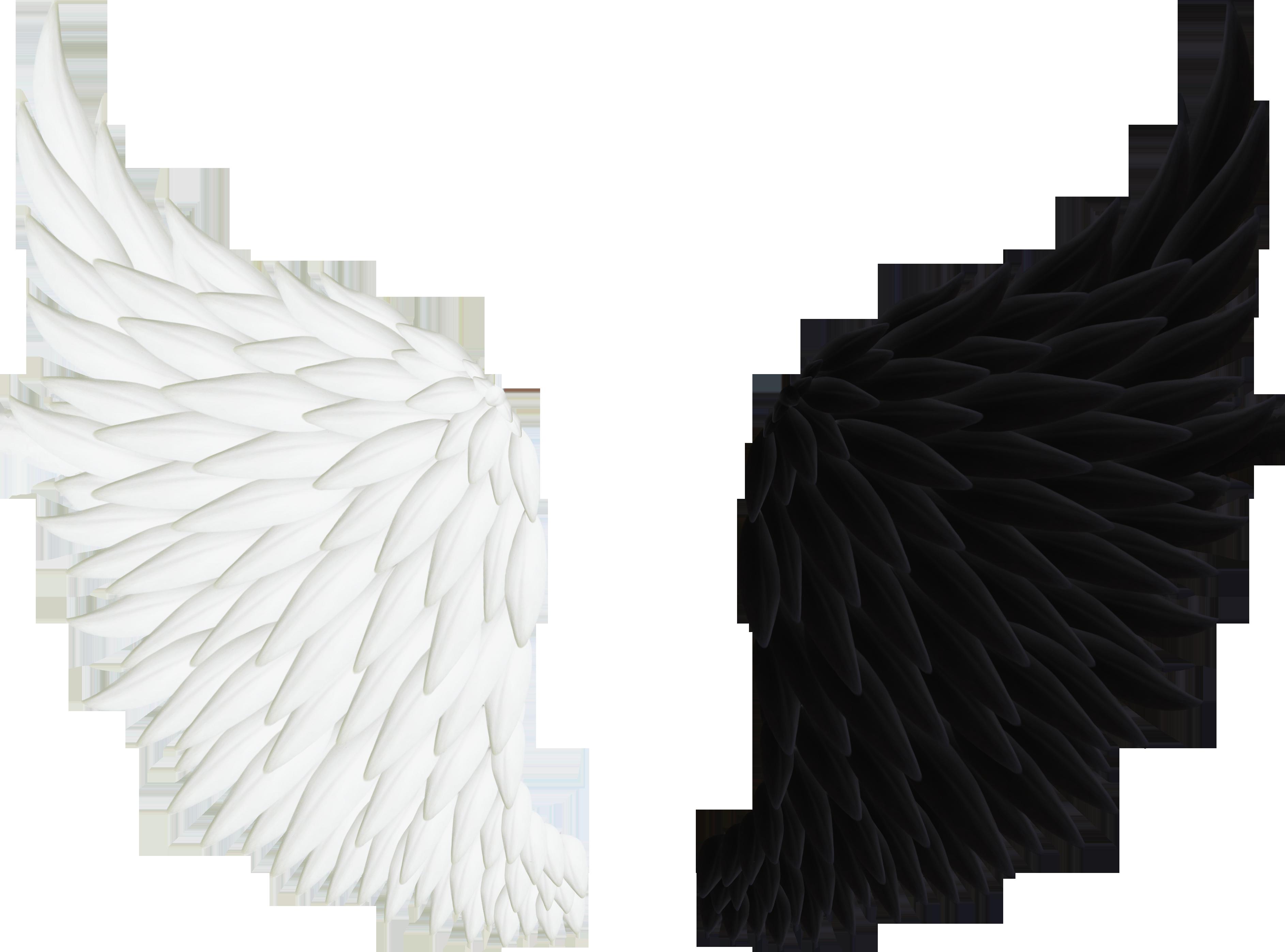 это картинка крыло ангела архангелов