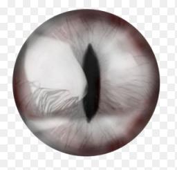 Линзы кошачий глаз фото